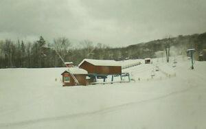 BSC Trail Cam